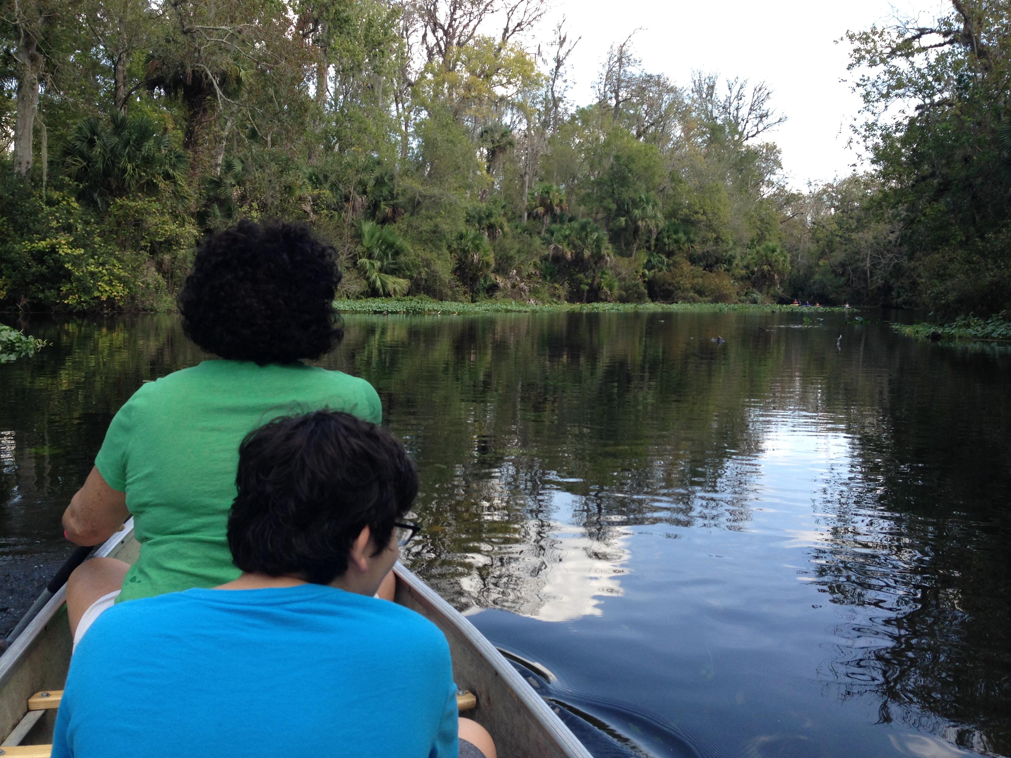 Wekiwa River by Canoe