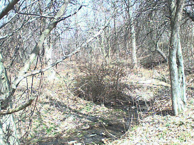 Nathan's Creek